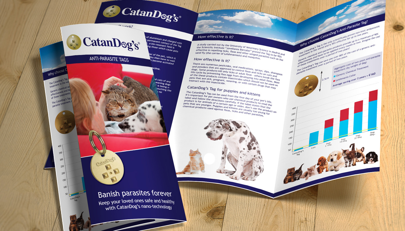 CatanDogs information flyer
