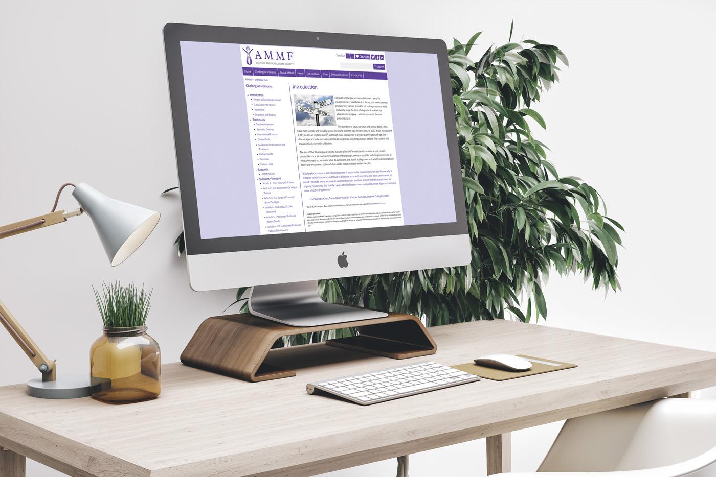 AMMF Website
